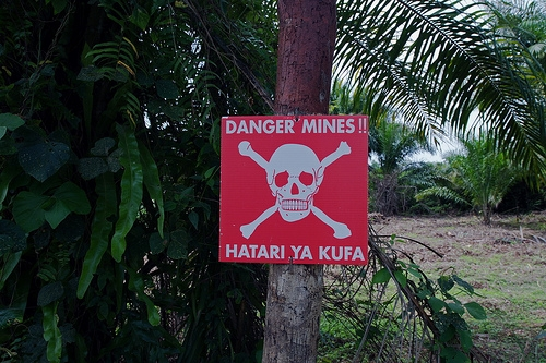 Near Kisingani, DRC. Photograph provided by UNMAS.